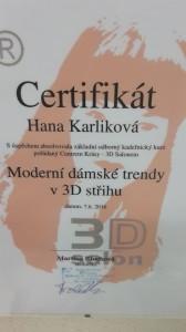karlikova_3D